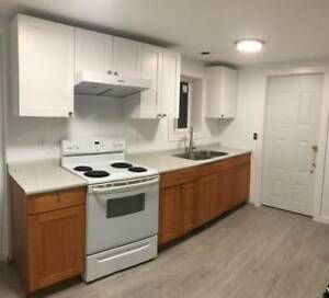 Lougheed - Spacious newly renovated 1BD/1BA for rent