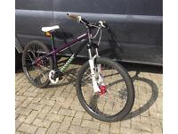 Specialised Dirt P1 Jump bike.