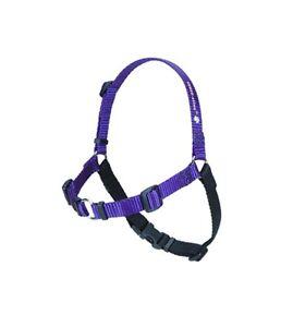 Original Sensation Dog Harnesses Small