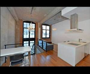 Luxury Condo on Two Floors - Downtown / Centre-ville