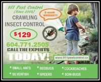 $129 only- INSECT CONTROL - Ants, Bed bugs, Spiders, Roaches....