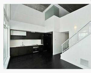 march 1st 2br 2bath downtown loft rad roomate wanted