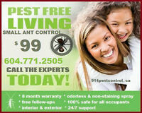 Ant control @ $99! 8 month warranty! Free follow-ups!