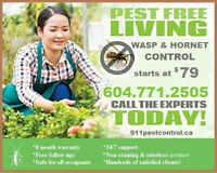 Wasp and Hornet Control @ $79! Warranty! Free follow-ups!