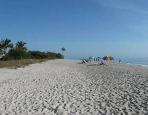 Are you Looking to buy a Home or Condo in warm, sunny Florida ?