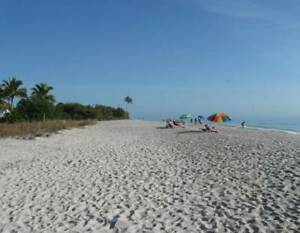 Are you looking to buy a Condo in warm and sunny Florida?