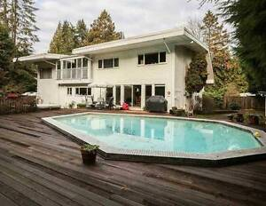 Newly Renovated Spacious 4BR + Den House (Lynn Valley) North Shore Greater Vancouver Area image 1