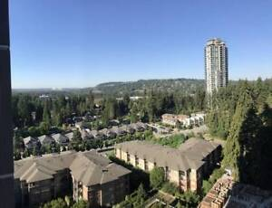 $2300 / 975ft2 - 2Br/2Ba 975sqft Apartment for rent (Brand New)