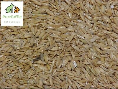 20kg Friendship Estates Whole Oats Wild Bird / Pigeon Quality Bird Food