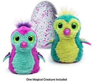 Looking for a Hatchimal Sarnia Sarnia Area image 1