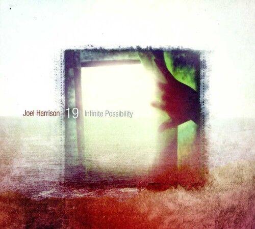 Joel Harrison 19 - Infinite Possibility [New CD]