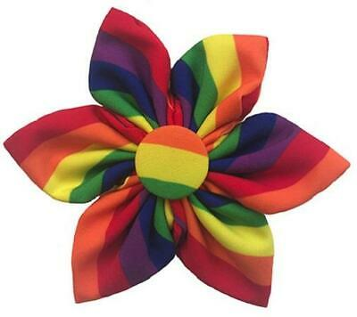 NEW Rainbow Stripe Pride Pinwheel Collar Attachment by Huxley & Kent](Rainbow Pinwheel)