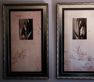 Large Floral Pictures/Wall Hanging/ Wall Art/Frames 22 x 44