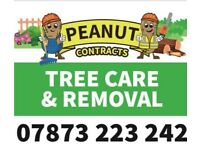 Peanut Contracts Tree care and removal 07873223242