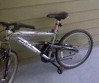 Nakamura Dual Suspension MTB - Tuned Up - Delivery!