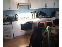LARGE SPACIOUS DOUBLE ROOM TO RENT IN FLAT SHARE ON CHRISTCHURCH ROAD IN BOSCOMBE.