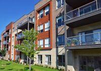Grands condos 3.5 Neufs + bureau à Louer ( Longueuil/St-Hubert )