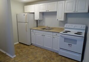 Updated two bedroom apartment for rent in Kingston