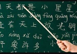 Looking for Language Mentor/Teacher Kitchener / Waterloo Kitchener Area image 1