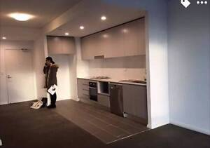 Fully furnished brand new apartment with your own bathroom Kogarah Rockdale Area Preview