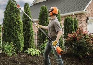**Tree Removal, Tree Planting, Tree Pruning**