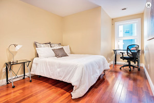 Looking for 2 female roommates at 655 Princess in Kingston!!