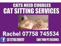 Cat Sitting - Coventry
