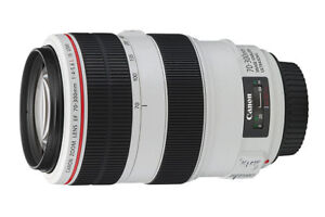 Canon  70-300 L IS & Sigma 24-105 Mint Priced to go!