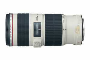 Canon EF 70-200mm f/4L IS USM  (image stabilized version)