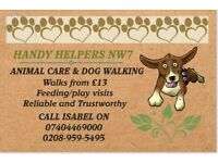 Local, Experienced Dog Walker/Pet Sitter