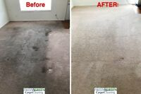 AFFORDABLE CARPET STEAM CLEANING ,PET  ,STAIN AND SPOT REMOVING