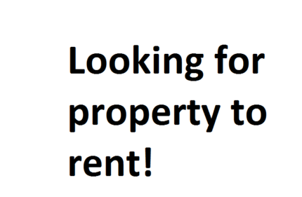 Looking for House to rent - Pets allowed