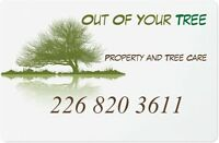 Tree cutting, Pruning, Trimming, Removal,Tree Care
