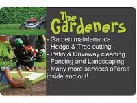 Garden maintenance, gardener, clearing, Fencing, landscaping, gritting