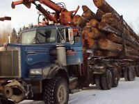 Log truck loads of firewood and firewood for sale.