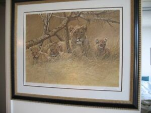 LIONS North Shore Greater Vancouver Area image 2