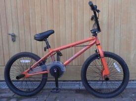 KIDS BMX BIKE, X-RATED DECOY
