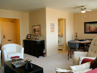 St. Catharines 1 bedroom Apartment for Rent: