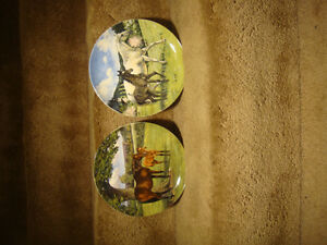 Collector Plates - Horses