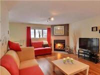 Cozy, beautiful 3(1/2) lasalle condo with pool and fireplace