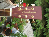 Tanglewood TW28ST-RCE Acoustique
