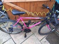 """Mountain bike. 20"""" frame & 18 speed. Can deliver"""