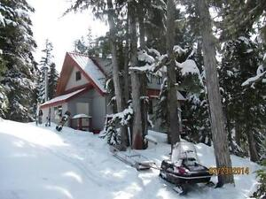 Ski Cabin Mount Cain Ski Hill Comox / Courtenay / Cumberland Comox Valley Area image 2