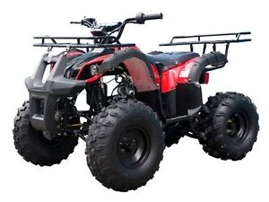 New Mid Size 125cc Kids ATVs  for $899.99! Call: 1-800-709-6249