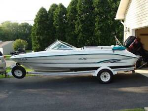 WANTED ... YES ... WANTED  Sea Ray Fish & Ski Outboard Boat