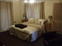 1 single room in international household near Canning Town train station.