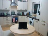 Large Double room Excellent modern St ives near to guided bus pubs cafes parking - not to be missed
