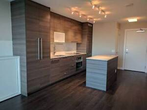 $1300 / 1br - Brand New / Partially Furnished
