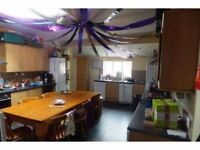 3 x Double room available in sociable, friendly 13 bed house just off Gloucester Road