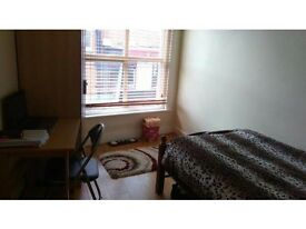 Beautiful single room in Friendly Flat